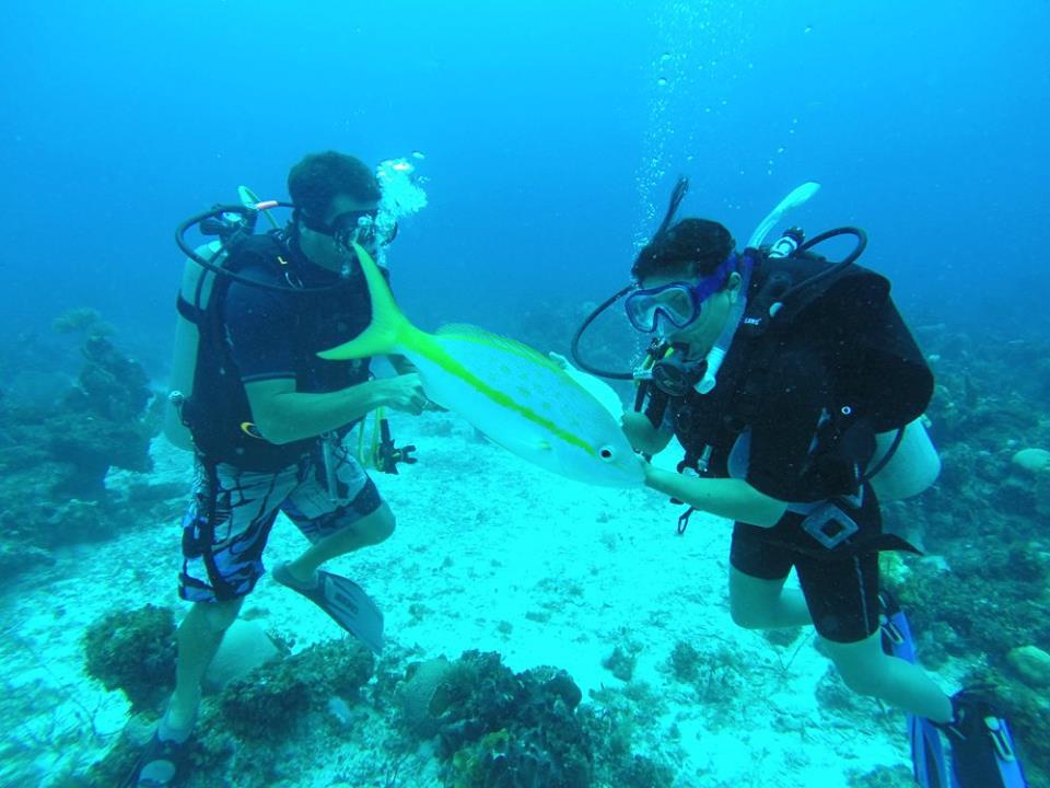Snorkeling in Punta Frances